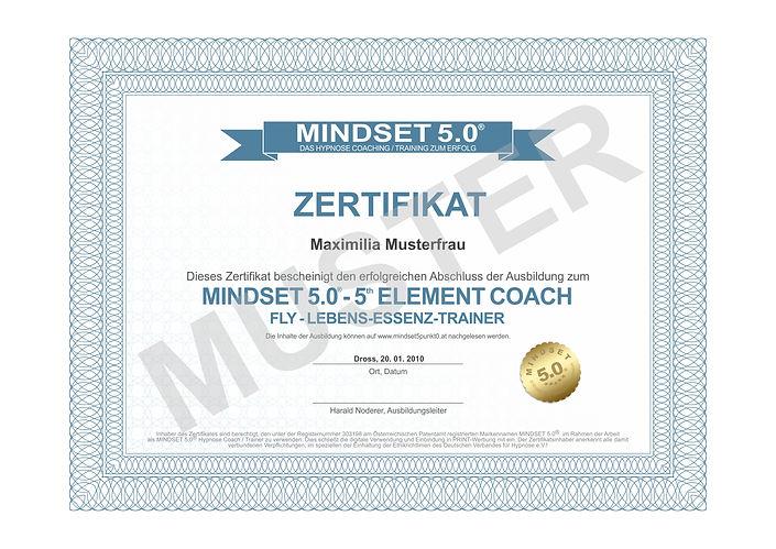 zertifikat2 - FLY LET Trainer.jpg