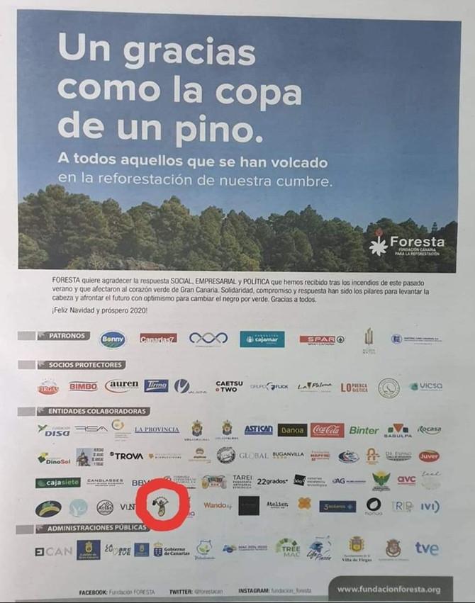 Reforestación de Gran Canaria