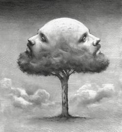 Tree of men