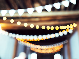 Hanging lights in the backdrop of a Crescenta Valley pet event
