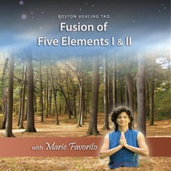 Fusion 1 & 2 Meditation CD