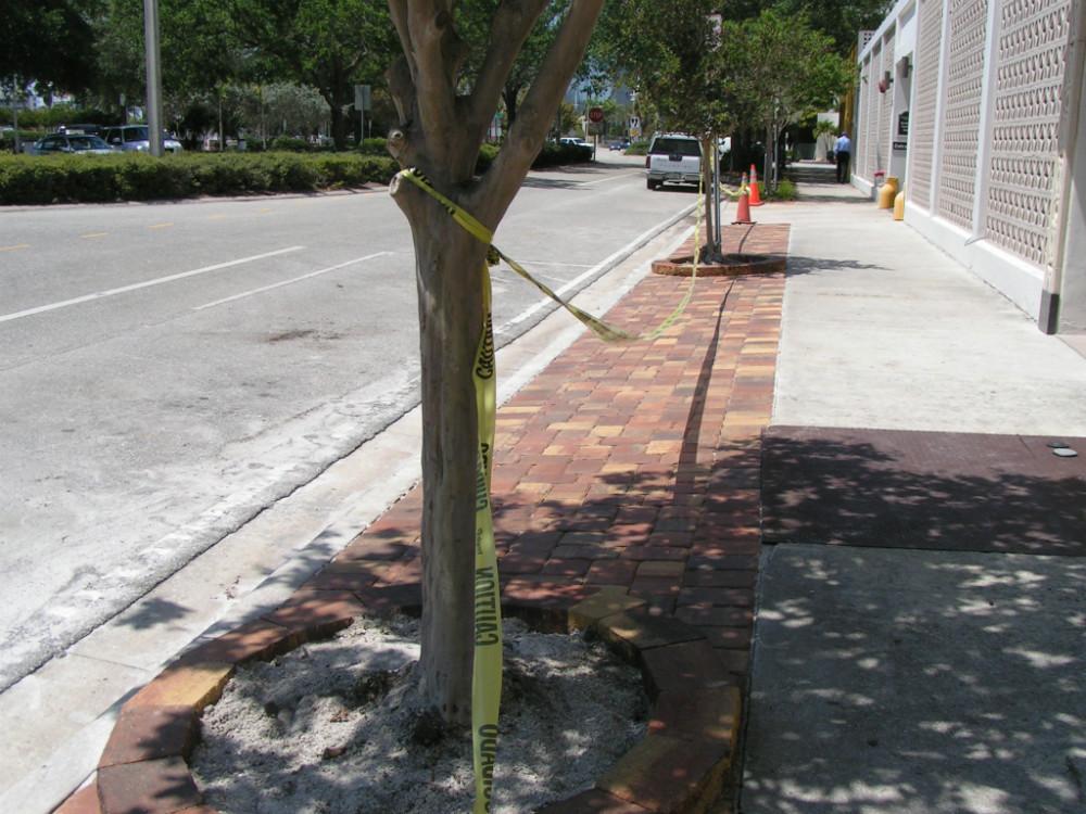 Curbside 2012 1