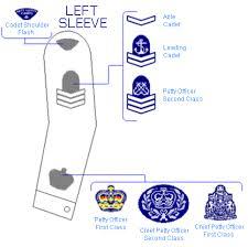 leftsleeve.png