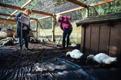 Black Sheep Friday 2017_Driftwood Mag (30).jpg