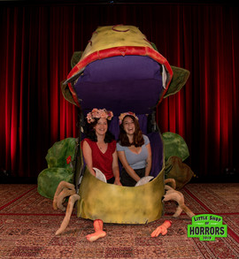 Little Shop of Horrors_2019-114.JPG