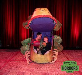 Little Shop of Horrors_Driftwood Mag-363