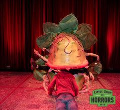 Little Shop of Horrors_Driftwood Mag--3.