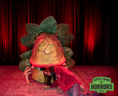 Little Shop of Horrors_Driftwood Mag-358