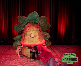 Little Shop of Horrors_Driftwood Mag-358