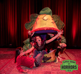 Little Shop of Horrors_Driftwood Mag--6.