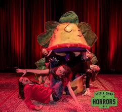 Little Shop of Horrors_Driftwood Mag--5.
