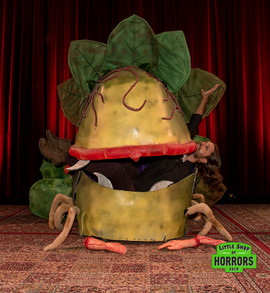 Little Shop of Horrors_2019-97.JPG
