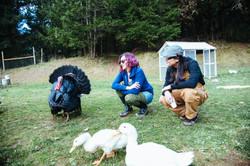 Black Sheep Friday 2017_Driftwood Mag (65).jpg