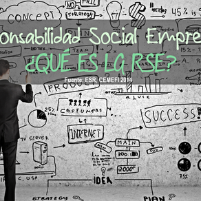 Social responsibility in business