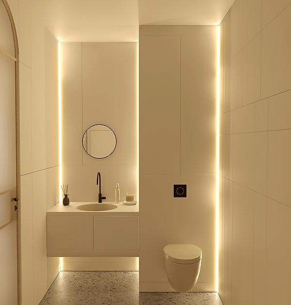 toilet design cielo.jpg