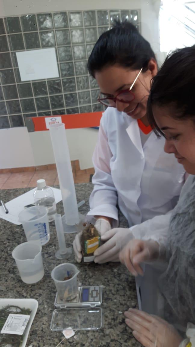 Aulas práticas do curso de Farmácia.