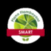plano SMART logo.png