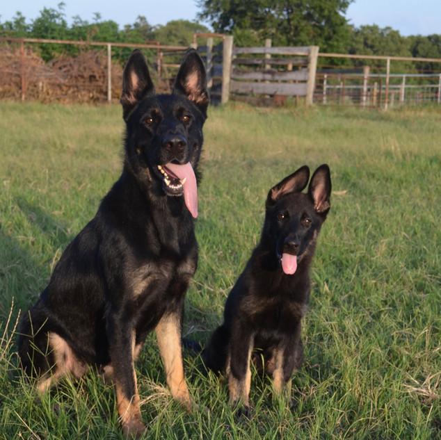 Cora and Tuffy