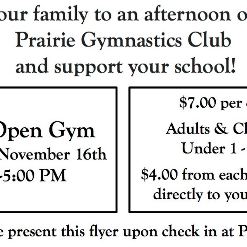 Prairie Gymnastics Open Gym