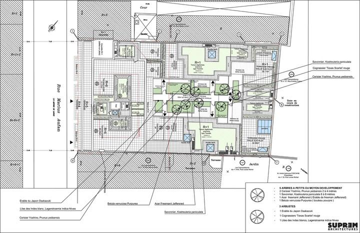 Logements MARIUS AUFAN - Plan de toiture