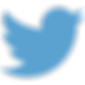 blue-twitter-transparent-png-2.png