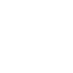 df logo 2021 update white.png