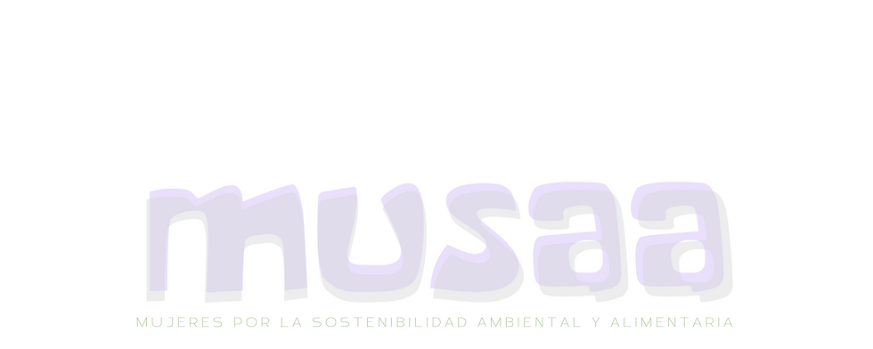 musaa-3.png