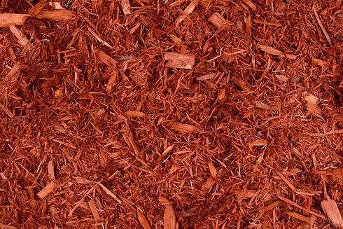 red dye mulch.jpg