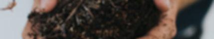 kyle-ellefson-196125-unsplash.jpg