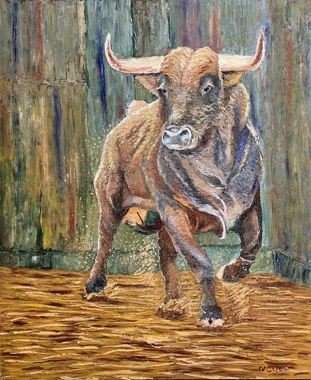 Toro 5