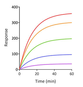 Horizontal exponential 3.jpg