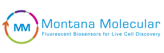 MM_horizontal-logo-w-tagline_transparent