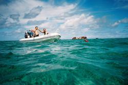 Snorkelling at Middleton Reef