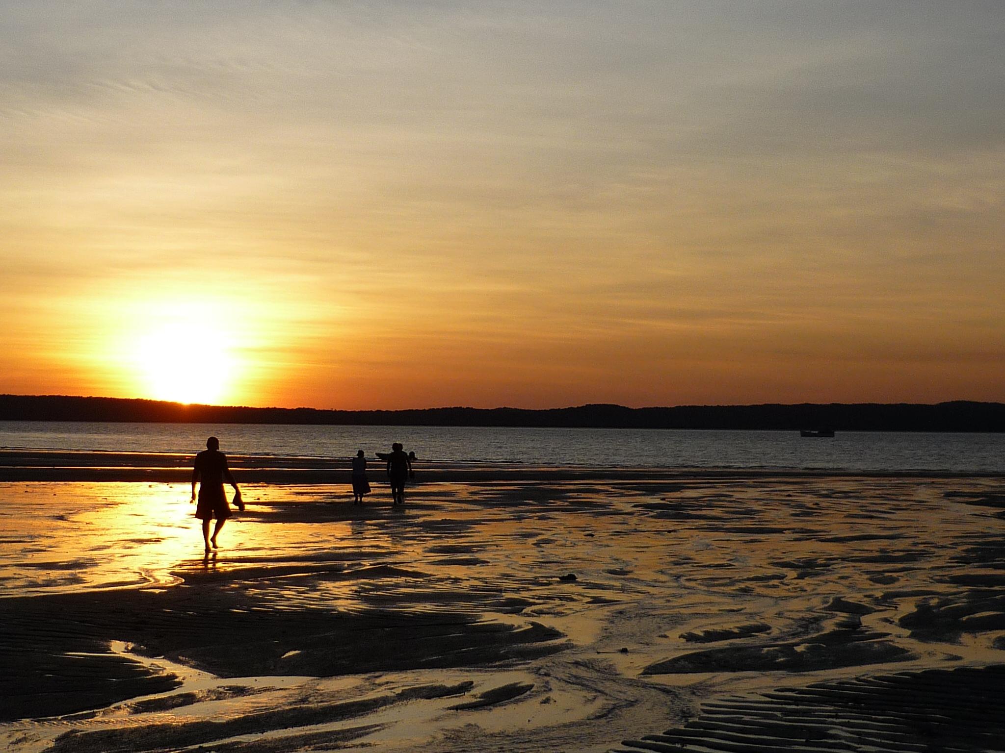 Careening Bay Sunset