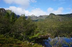 Gullvika, Lofoten