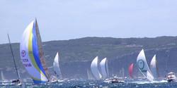 Hobart Race Fleet