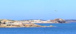 Babel Island Shoreline