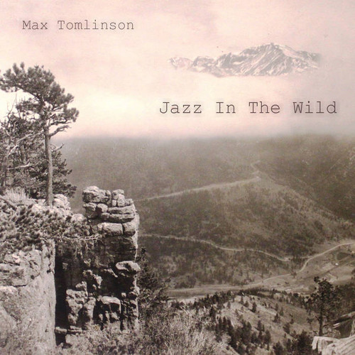 max album.jpg