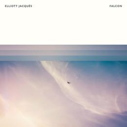 Elliott Sansom - Falcon.jpg