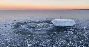 thin ice barky's resort