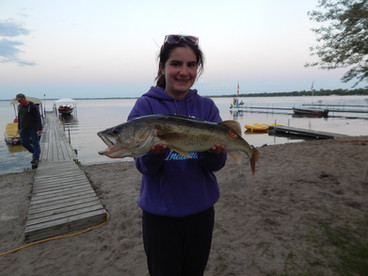 Walleye - Shady Grove Resort