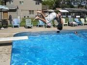 Flipper - Shady Grove Resort