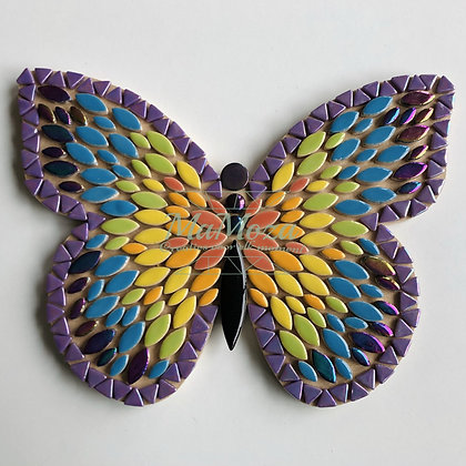 DIY Vlinder Rainbow 25 cm