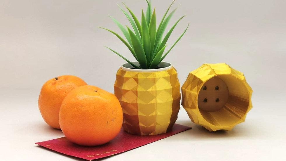 Pineapple Planting Pot