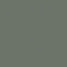 vert de gris.png