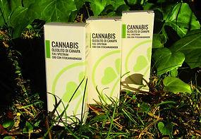 oleoliti-cannabis-legale.JPG
