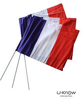 drapeau supporter.JPG