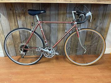 adult bike.jpg
