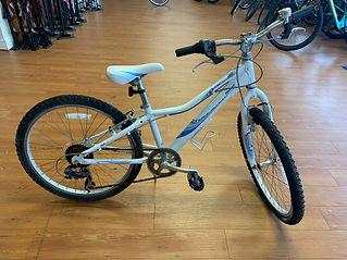 giant revel ckids bike for website.jpg