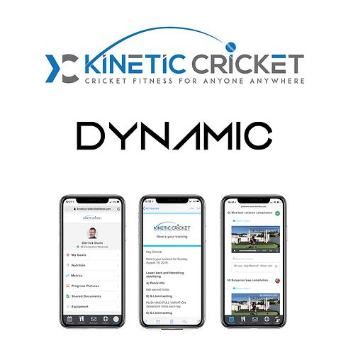 Kinetic Cricket - Dynamic package (3 month program)